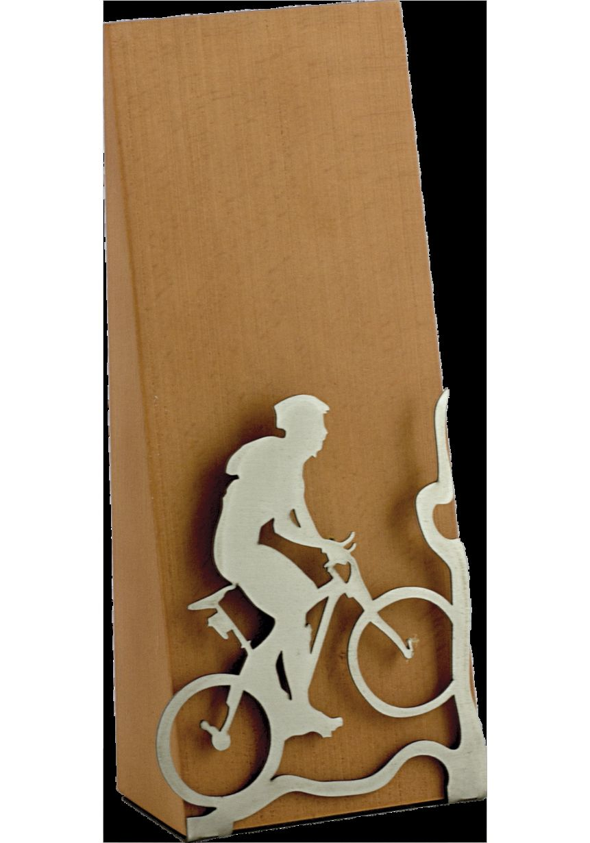 Trofeo Mountain Bike en madera y metal