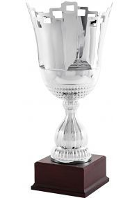 Cup silver chalice crossed lines