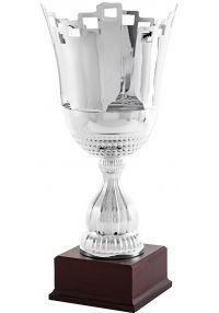 Trofeo copa Castillo