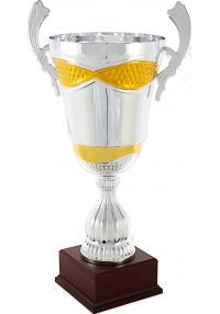 Cup silver/bronze handles