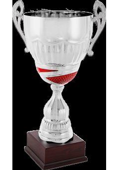 trofeo copa platarojo asas 11