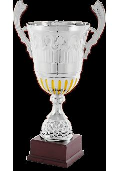trofeo copa bicolor plataoro asas 12