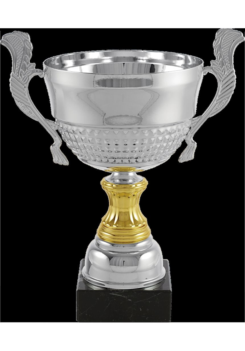 Trofeo copa colmena con asas bicolor oro/plata