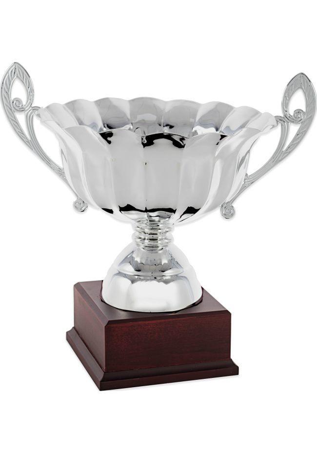 Trofeo copa ensaladera plata