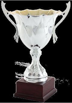 copa ensaladera plata 11