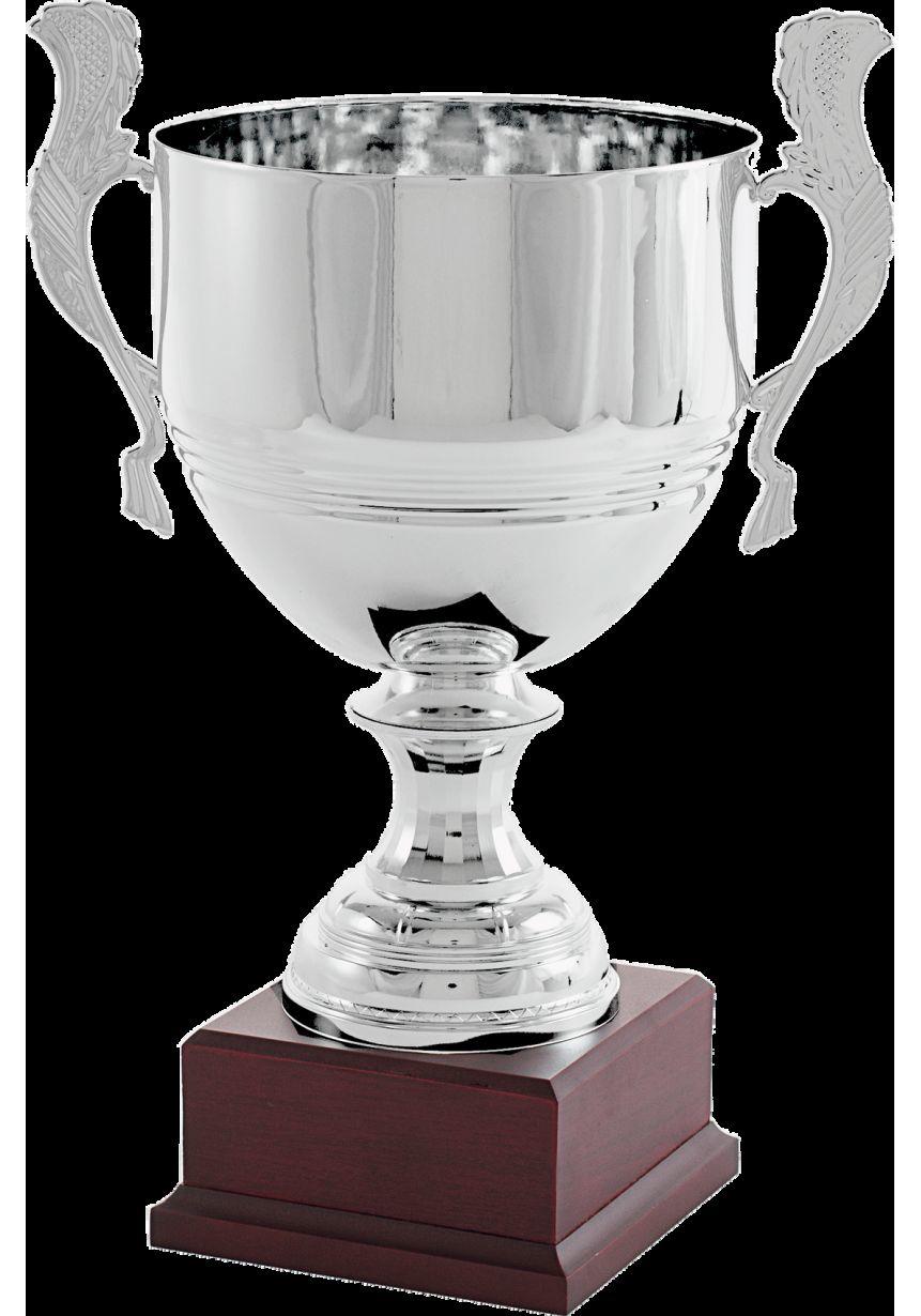 Trofeo copa vaso rayas plata