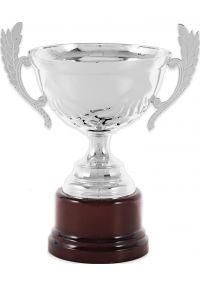 Trofeo Rombo Asas