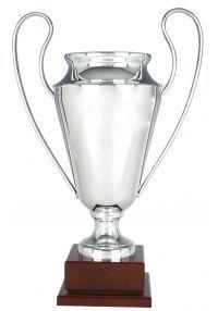 Replica Europe Cup