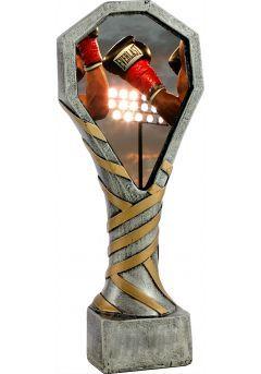 trofeo de boxeo