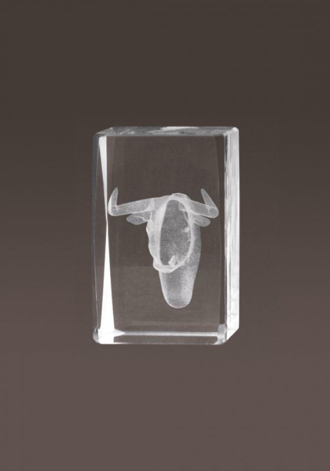 Trofeo cristal 3D Toros