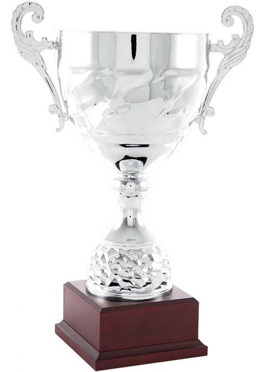 Trofeo copa colmena con asas