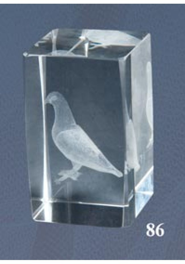 Trofeo cristal 3D Paloma