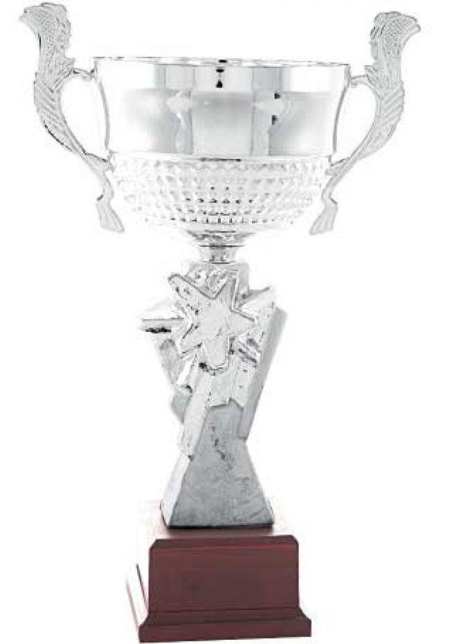 Trofeo copa  centro estrella