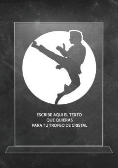 trofeo artes marciales de cristal