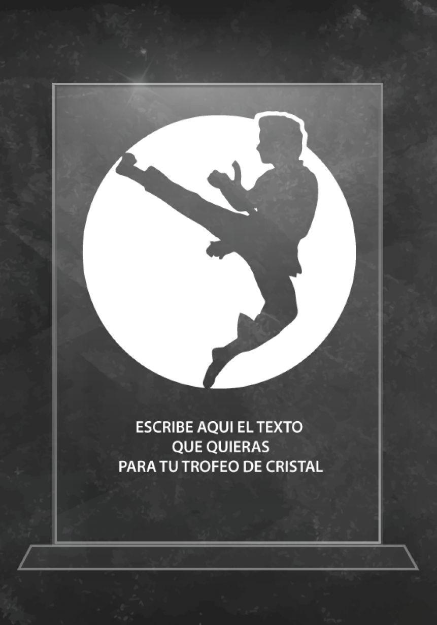 Trofeo de Artes Marciales de Cristal