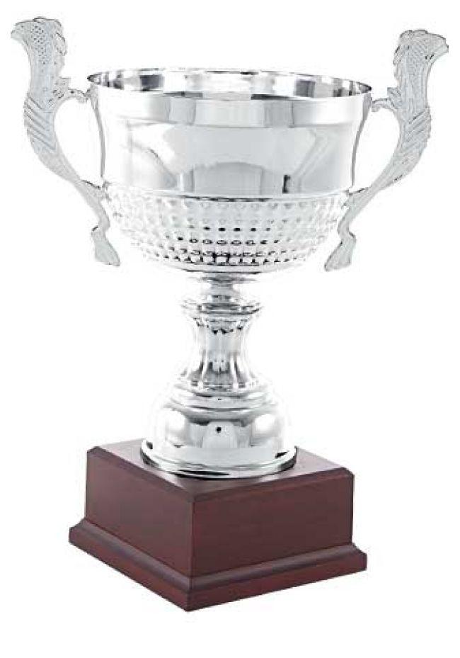 Trofeo copa en colmena con asas