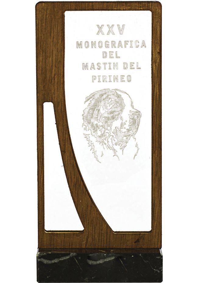 Trofeo metacrilato-madera