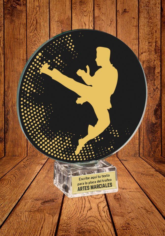 Trofeo de cristal para Artes Marciales