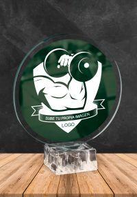 l'image cristal trophée personnalisé inclus