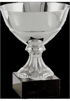 trofeo copa mini plata 11