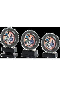 Trofeo con disco de mountainbike