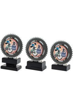 Trofeo con disco de mountainbike Thumb