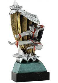 Trofeo patada karate-2