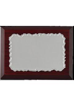 placa de homenaje pergamino copia 1