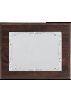 placa de homenaje platan copia 1