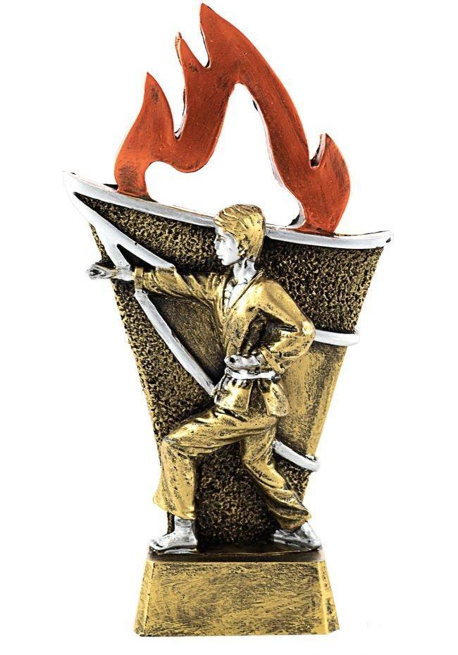 Trofeo Antorcha Karate