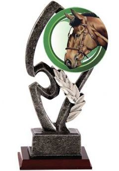 Trofeo resina alegórico base madera  Thumb