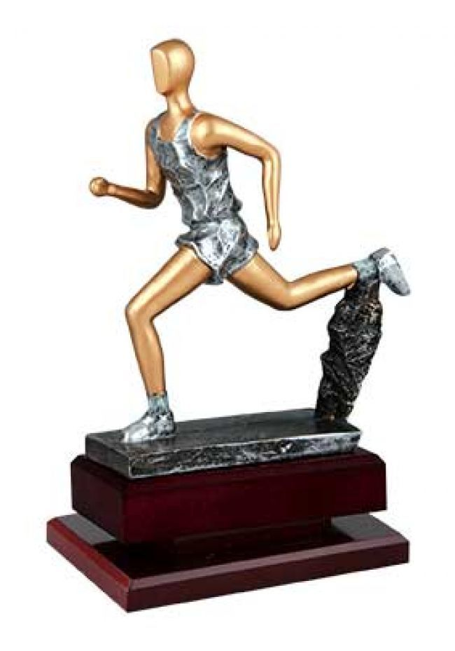 Trofeo de cross serie elite plata y oro