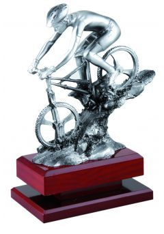 Trofeo de Mountain bike de descenso-1