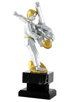 Trofeo de Judo con figura plata y oro Thumb