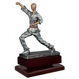 p karate serie elite plata y oro 56