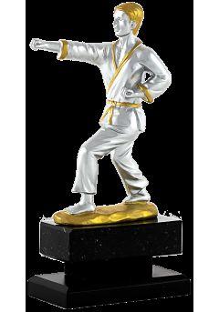 karate serie elite plata y oro 8