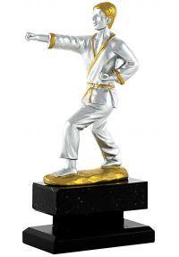 Trofeo de Karate-1