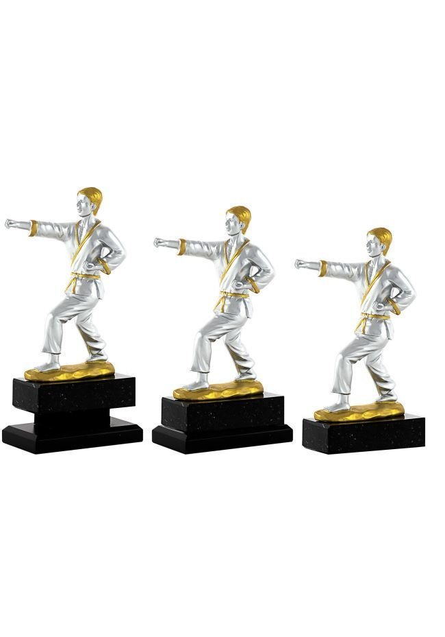Trofeo de Karate