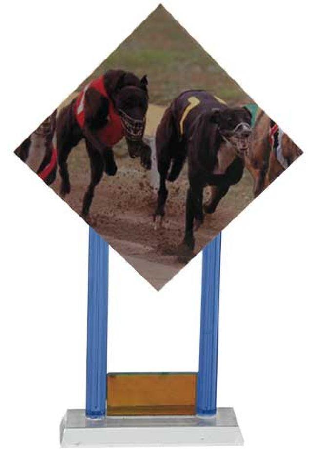 Trofeo de azulejo cristal y detalle naranja con sublimación