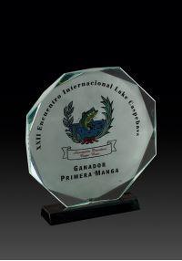 Octagonal crystal trophy color image