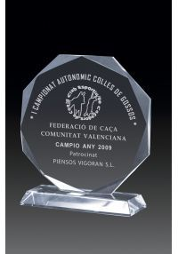 Octagonal crystal trophy rectangular base