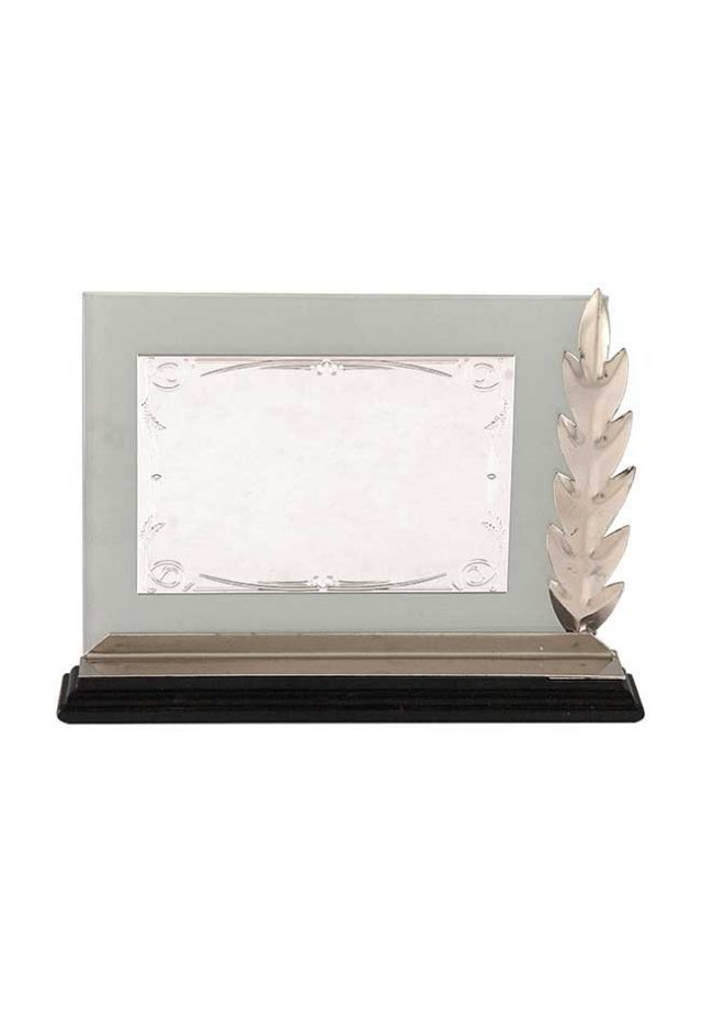 Placa de homenaje especiales forma rectangular cristal placa aluminio