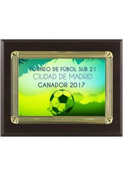 Placa de homenaje especiales forma rectangular aluminio