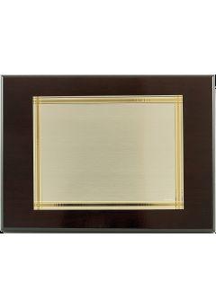 placa de homenaje banado en plata bicolor 13