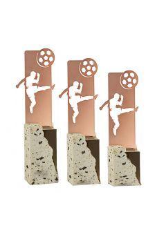 Trofeo metal fútbol Thumb