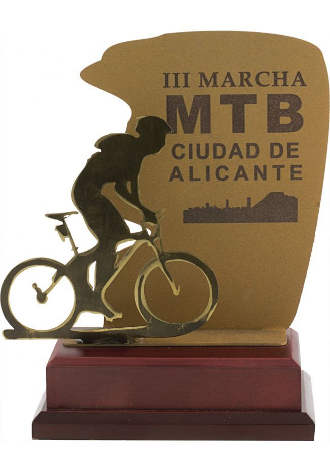 Trofeo metal mountainbike