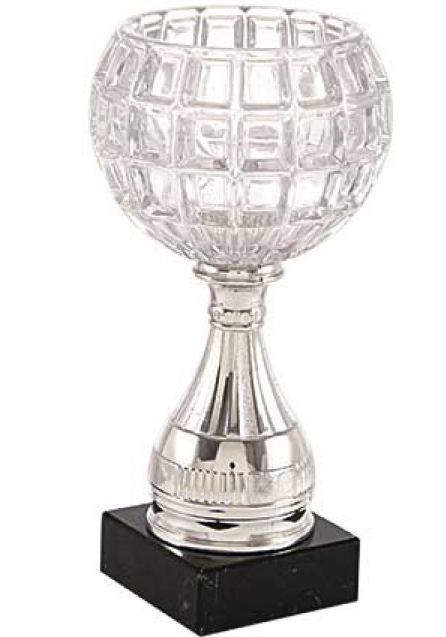 Trofeo copa media bola cristal