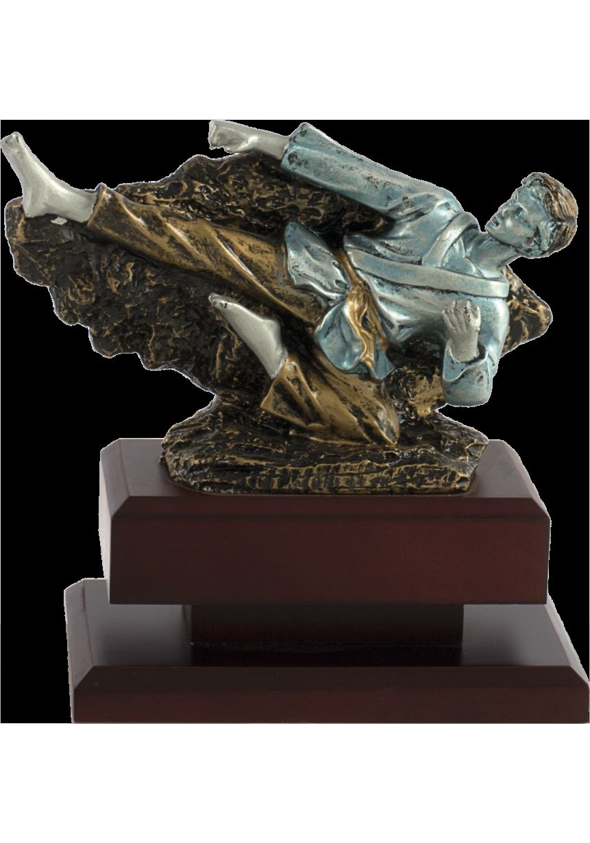 Trofeo patada karate